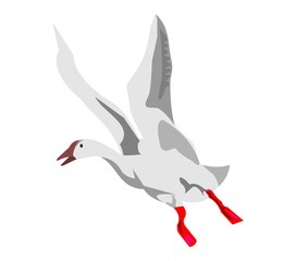 летающий гусь