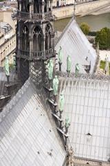 Guglia di Notre Dame - Parigi