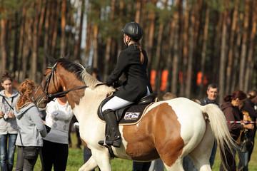 Dziewczyna, dżokejka na pięknym kolorowym koniu.