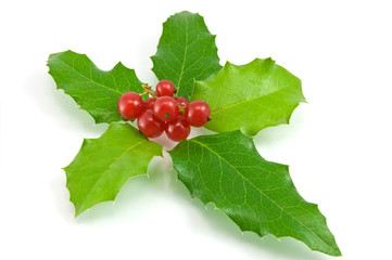 christmas decoration with holly leaves and berries