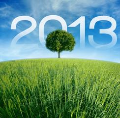 2013 vœux écologique