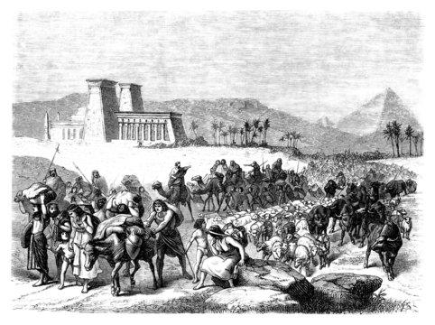 Biblical Scene : Exodus
