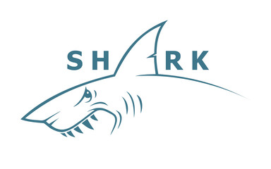 Shark banner - vector illustration