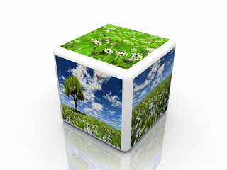 the natur cube with pictures