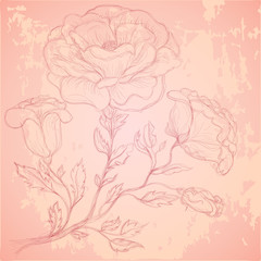 Sketch of rose branch on grungy texture