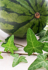 Watermelon whole and green leaves