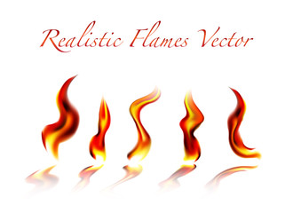 Realistic Flames Vector on white background