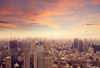 Foto op Aluminium Tokyo Tokyo Skyline