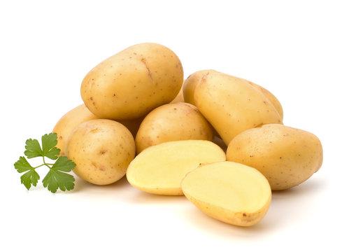 New potato and green parsley