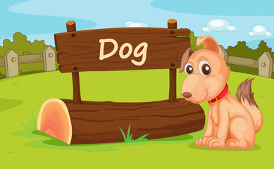 Poster Dogs Zoo animal