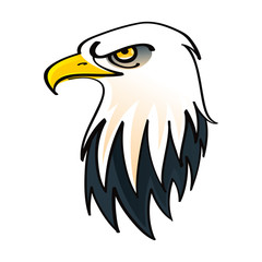 Head of the Bald Eagle - symbol of the United States of America