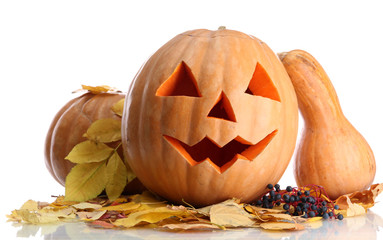 halloween pumpkins and autumn leaves, isolated on white