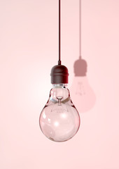 Hanging Light Bulb And Fitting