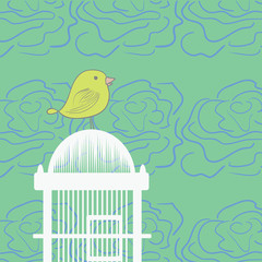 Printed roller blinds Birds in cages Bird Cage Hand Drawn Illustration