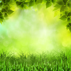 Natural neauty. Abstract natural backgrounds for your design