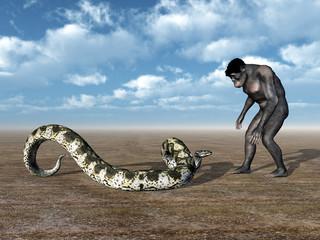 Homo Habilis and Boa Constrictor