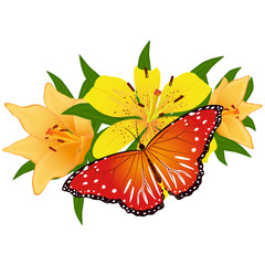 Butterfly on a flower-4
