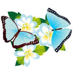 Butterfly on a flower-5