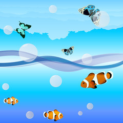 Fish and butterflies