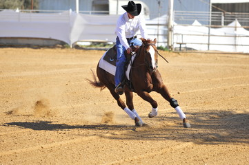 Man riding a horse in competition