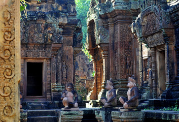 jungle temple in cambodia