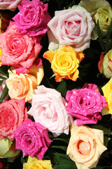 Multicolored rose bouquet