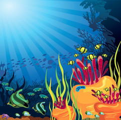 Colored coral reef and fish