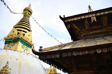 Stupa de Svayambhunath, Temple des singes Népal