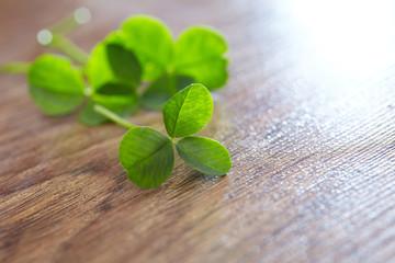 leaf clover on wood background