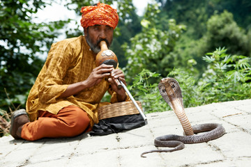 charmer of snake in India