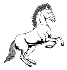 Black and white horse illustration