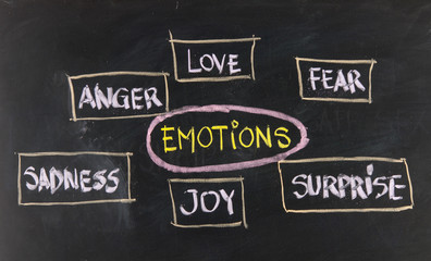 love, fear, joy, anger, surprise and sadness