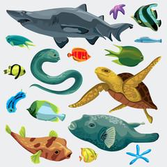 Set of marine fihs