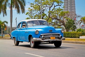 Garden Poster Cars from Cuba American classic cars in Havana.
