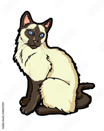 la perm kittens