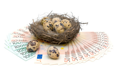 quail eggs and euro on white background