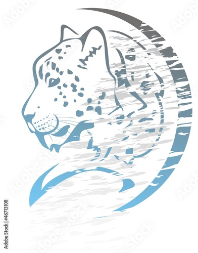 Snow Leopard Symbol Graffiti Stock Image And Royalty Free Vector