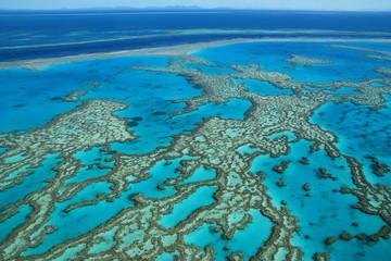 Foto op Canvas Australië Grande Barriere de corail, Australie