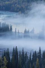 Keuken foto achterwand Bos in mist fog over river & forest in autumn
