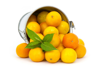fresh tangerines on white