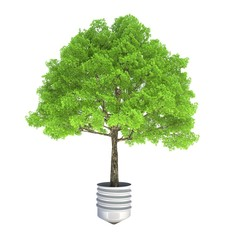 Green energy lamp with tree isolated on background