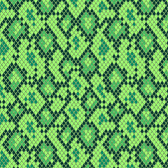 Snake skin in green seamless pattern, vector