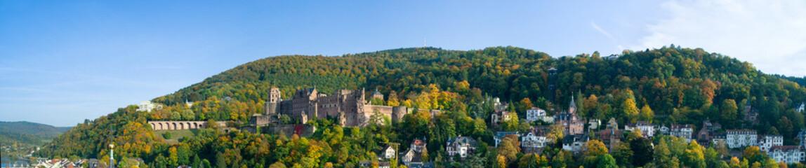 Wall Mural - Heidelberg Stadtpanorama