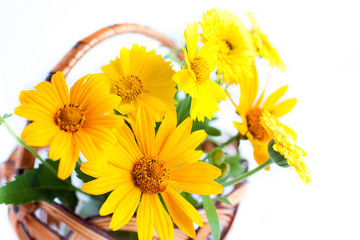 Yellow marigold close up, bouquet in the basket