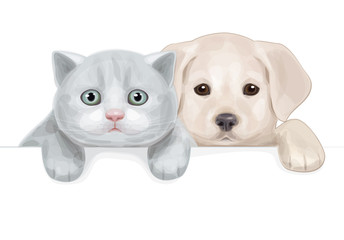 Vector of cute puppy and kitten hiding by blank.