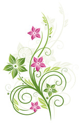 Frühling, frame, Blätter, Blumen, Ranke, grün, pink