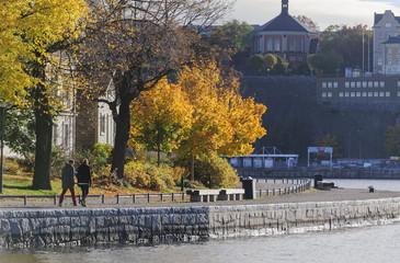 Stockholm autumn walkj