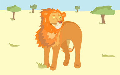 orange lion in the savanna