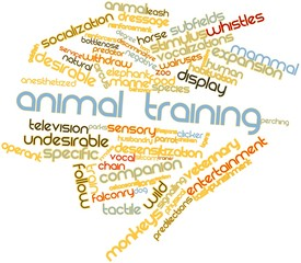 Word cloud for Animal training