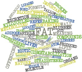 Word cloud for Fat